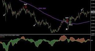 Forex Arbitrage Trading Software